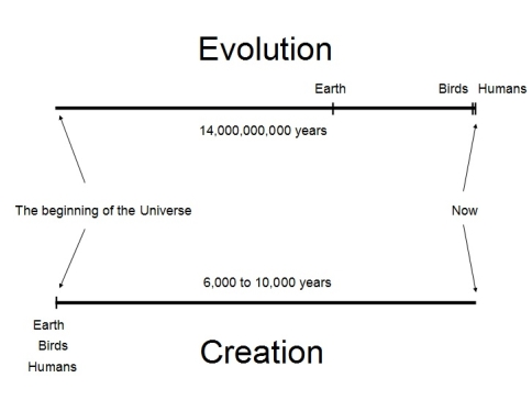 evolution vs creationism essay outline Free essay on evolution vs creation available totally free at echeatcom, the largest free essay community.